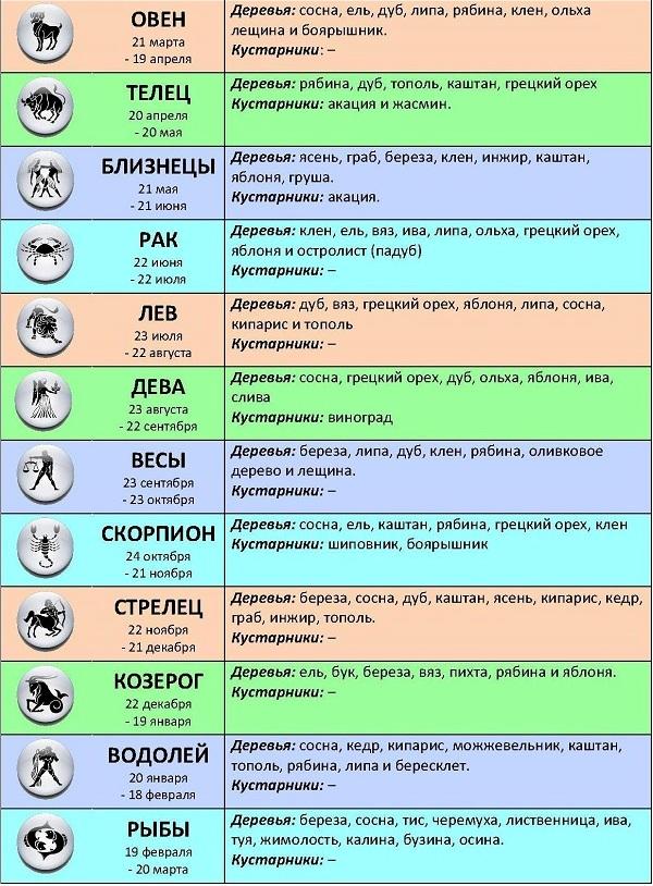 всегда характеристика по восточному гороскопу каждого из знаков болит копчик