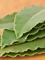 Цистит лечение в домашних условиях лавровым листом