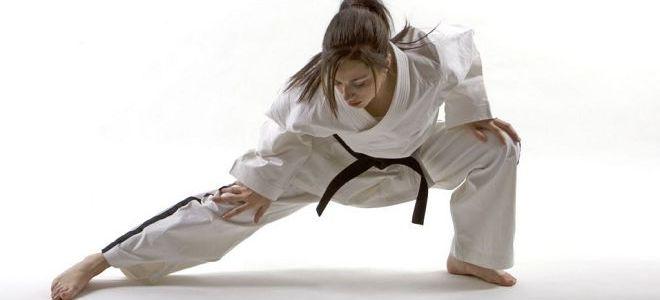 боевые виды спорта