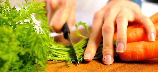Как приготовить мидии в раковине видео