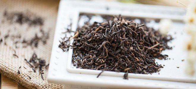 чай пуэр полезные свойства и противопоказания3