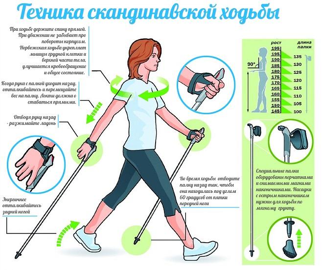 Как ходить с финскими палками