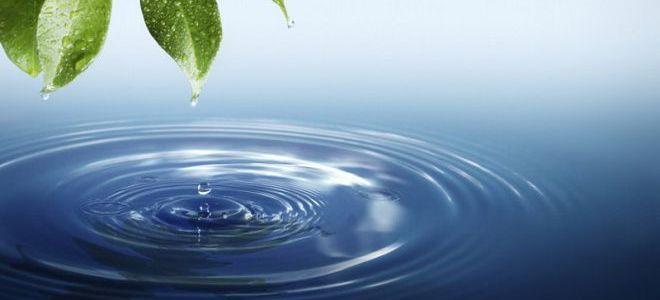 к чему сниться соленая вода