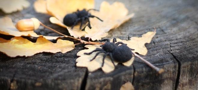 К чему снятся тараканы сонник что значит видеть во сне много тараканов