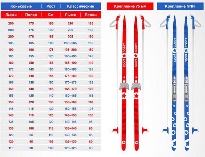 как правильно выбрать лыжи по росту прекрасная замечательная доченька