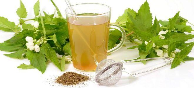 мочегонные чай для похудения отзывы и список