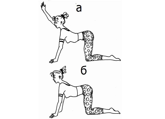 Бубновский упражнения для остеохондроза в домашних условиях 752