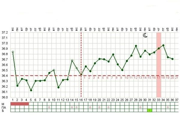 Температура на начальных сроках беременности