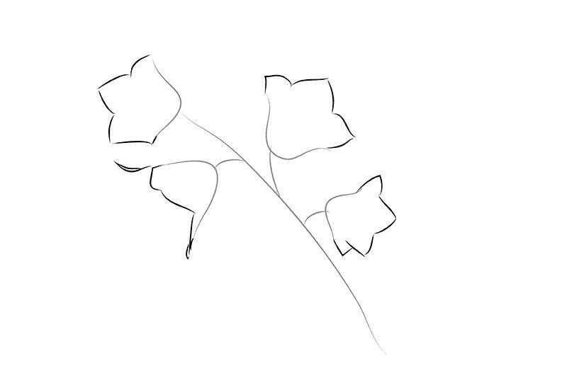 Как нарисовать букет цветов поэтапно карандашами