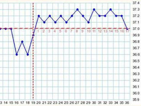 График бт при беременности до задержки примеры