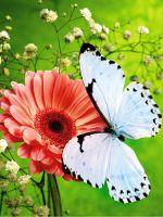 Поделка на тему «Весна» для детского сада