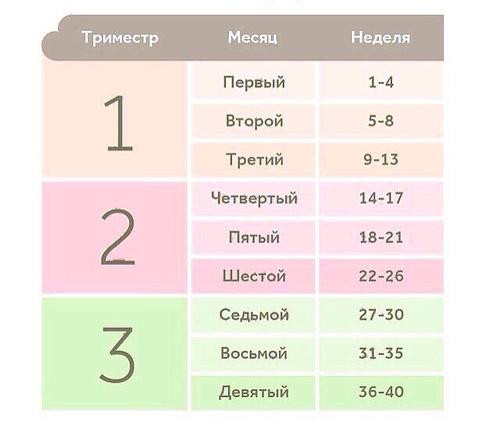 Высчитать срок беременности в неделях