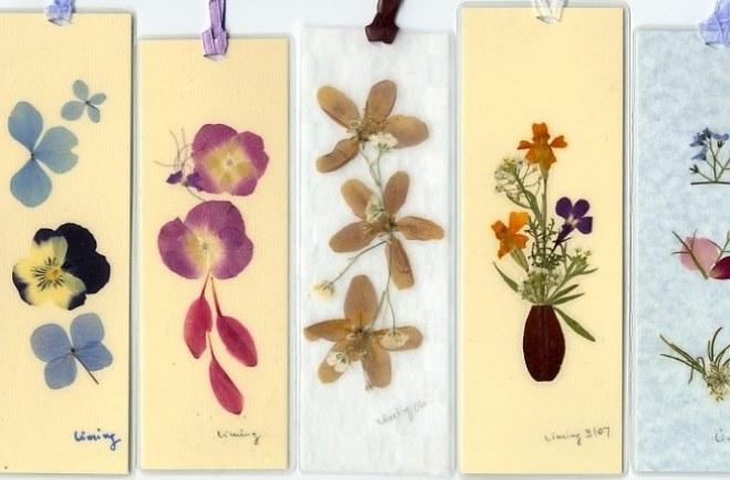 фото как сделать гербарий