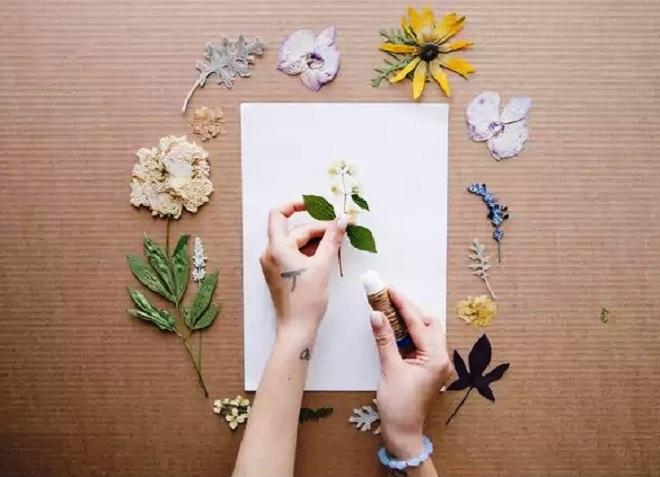 Как сделать гербарий своими руками фото