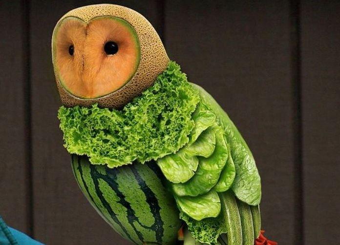 Удивительные поделки из овощей