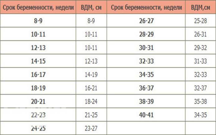 Размер матки по неделям беременности таблица