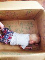 Что можно сделать из коробки?