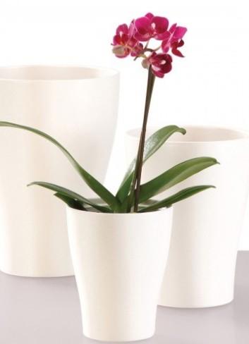 Можно ли сажать в глиняный горшок орхидею 4