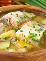 Уха - лучшие рецепты вкусного супа в домашних условиях