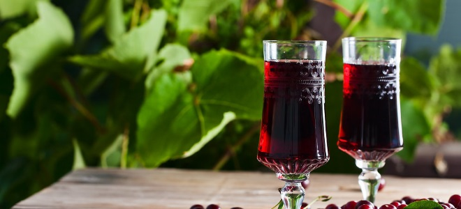 Вино из ирги в домашних условиях рецепт 28