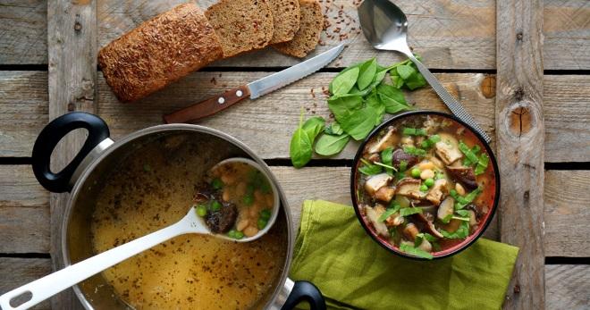 Грибной суп из свежих грибов - рецепты вкусных и очень ароматных первых блюд