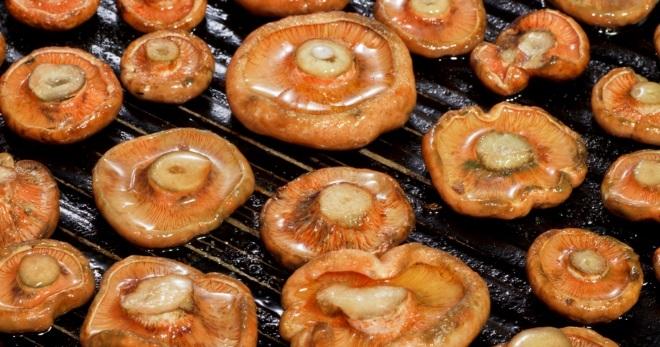 Жареные рыжики - лучшие идеи приготовления вкусных грибных блюд