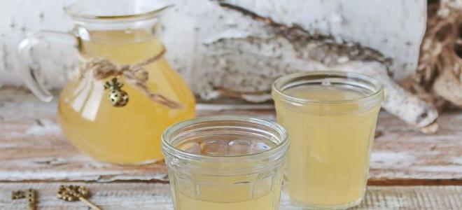 Квас из березового сока с изюмом рецепт