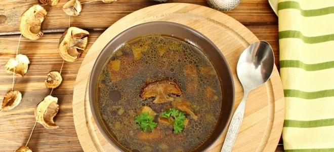 Грибной суп без мяса