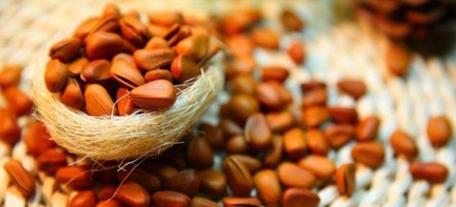 Как почистить кедровые орехи в домашних условиях