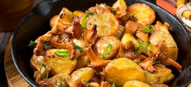 Как жарить лисички на сковороде с картошкой