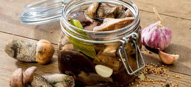Маринованные подосиновики рецепт на зиму