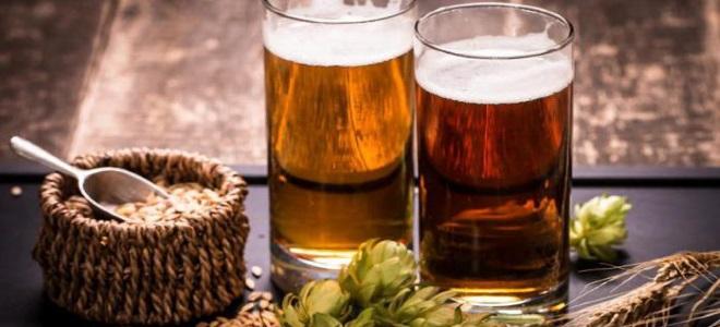 Рецепт приготовления пива в домашних условиях из концентрата