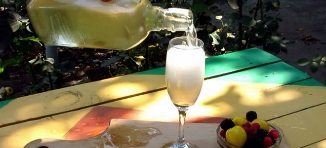 Шампанское в домашних условиях из винограда рецепт