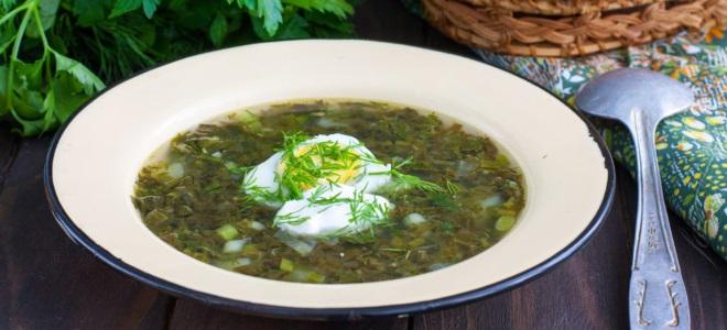 щавелевый суп со шпинатом рецепт