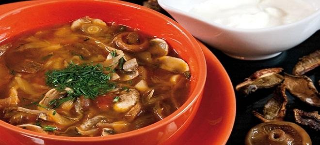 Суп-солянка с грибами и капустой - рецепт
