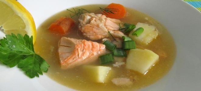 суп из радужной форели рецепт