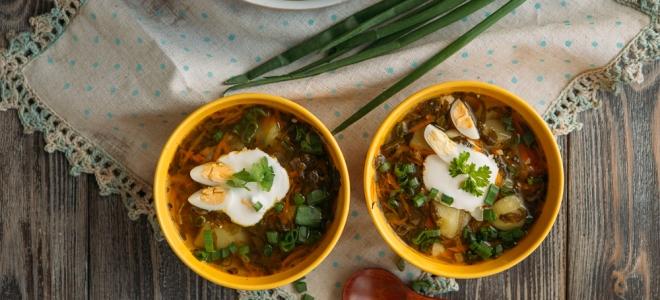 суп из щавеля с мясом