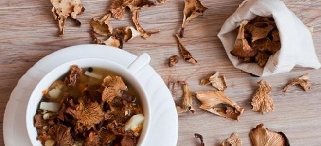 сушеные грибы польза и вред