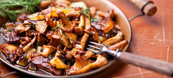 рецепты супов из грибов лисичек