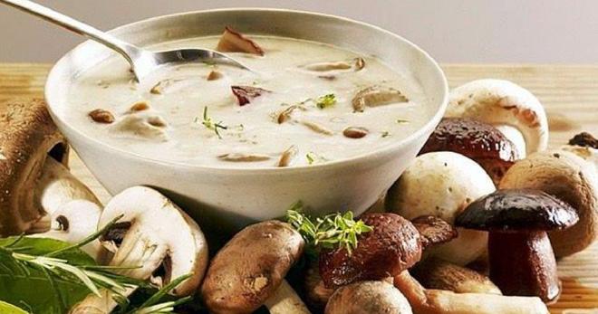 Суп с грибами и плавленым сыром, сливками, на молоке, с курицей, картофелем, вермишелью и другие рецепты