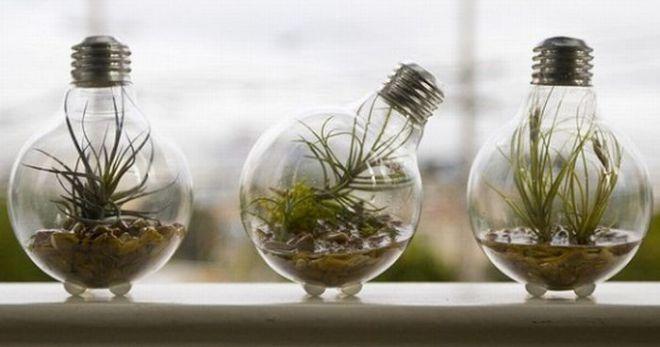 Поделки на тему 'Экология'