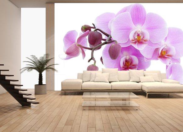 Интерьер кухни с фотообоями орхидея