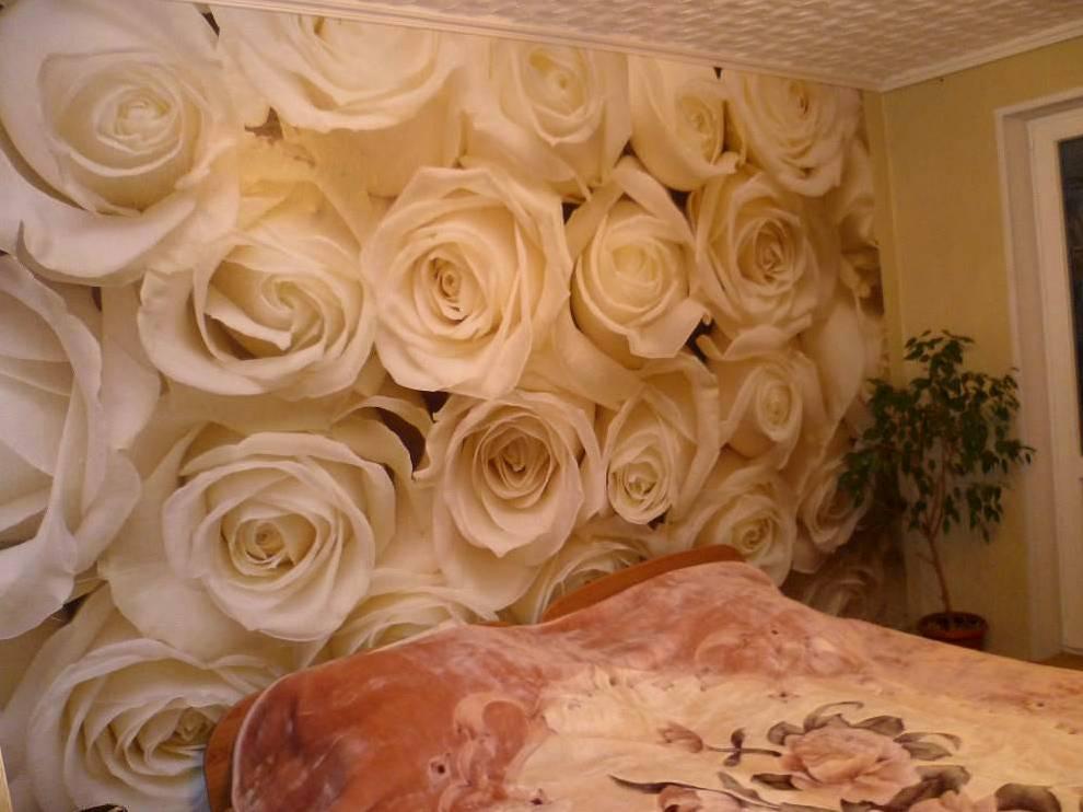 Идеальная белая роза : Энциклопедия роз