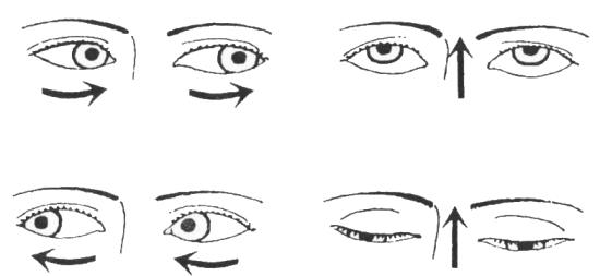 Кошачий глаз очки для зрения