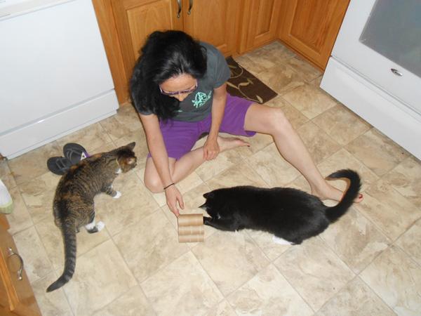 Игрушки для котят своими руками инструкция фото 890