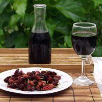 песни: вино из шелковицы в домашних условиях простой рецепт хотите узнать самые