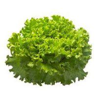 чем полезны листья салата