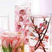цветы в глицерине мастер класс