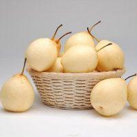 китайская груша польза и вред