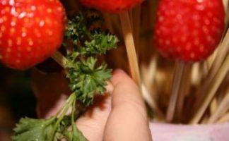 Букет из фруктов15